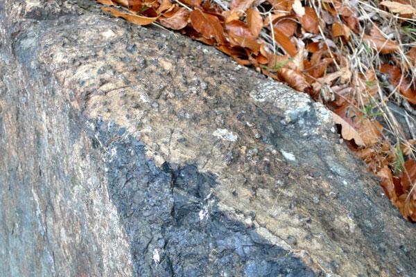La péridotite à grenats in situ